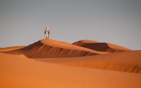 Zaufany sluga pustynia
